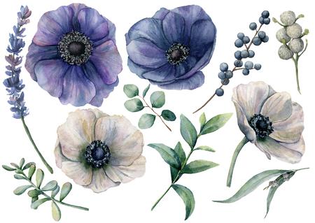 Aquarel witte en blauwe bloemen set. Handgeschilderde blauwe en witte anemoon, brunia-bes, eucalyptusbladeren, lavendel, sappig geïsoleerd op een witte achtergrond. Illustratie voor ontwerp, print of stof.