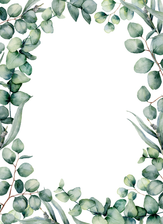 Watercolor frame with eucalyptus leaves. Hand painted baby, seeded and silver dollar eucalyptus branch isolated on white background. Floral illustration for design, print, fabric or background.