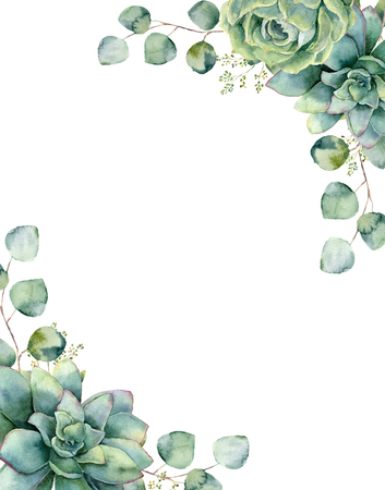 Watercolor card with exotic bouquet. Hand painted eucalyptus branch and leaves, green succulents isolated on white background. Floral botanical illustration for design, print or background. 스톡 콘텐츠