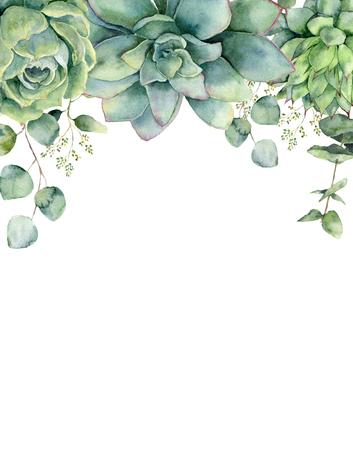 Carte aquarelle avec des plantes succulentes et des feuilles d'eucalyptus. Branche d'eucalyptus peint à la main, succulentes vertes isolées sur fond blanc. Illustration botanique florale pour la conception, l'impression ou l'arrière-plan. Banque d'images