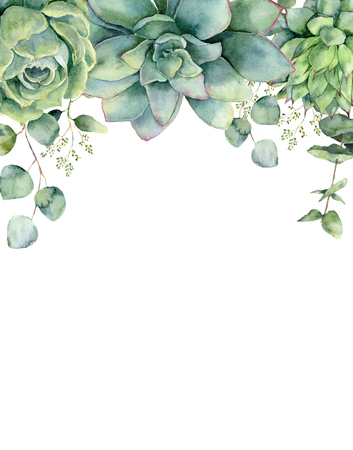 Watercolor card with succulents and eucalyptus leaves. Hand painted eucalyptus branch, green succulents isolated on white background. Floral botanical illustration for design, print or background. 스톡 콘텐츠