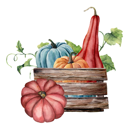 Watercolor card with pumpkins. Hand painted bright pumpkins with leaves and branches isolated on white background. Autumn harvest. Botanical illustration for design, print.