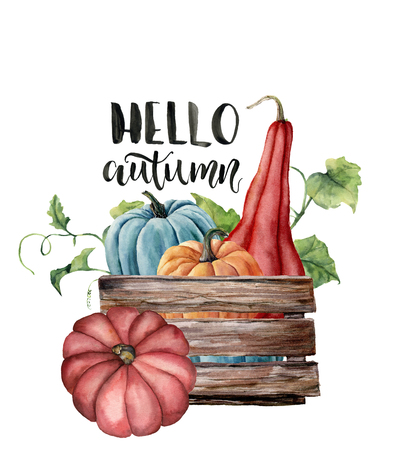 Watercolor Hello autumn card with pumpkins. Hand painted bright pumpkins with leaves and branches isolated on white background. Autumn harvest. Botanical illustration with lettering for design, print.