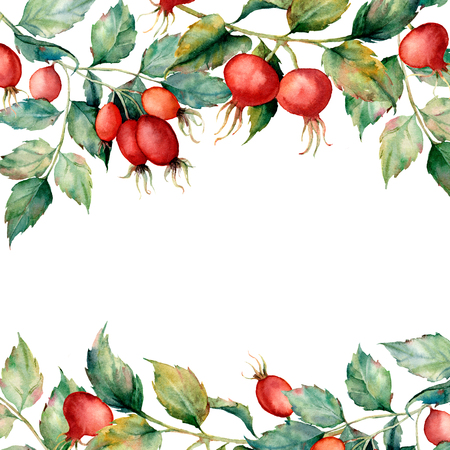 Watercolor card with branch of Dog rose, green leaves and red berries. Hand painted briar and hips isolated on white background. Illustration for design, fabric, print or background.