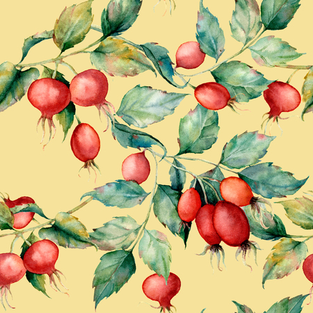 Watercolor big seamless pattern with branch of briar, red berries and green leaves. Hand painted Dog rose and hips isolated on yellow background. Illustration for design, fabric, print or background. Stock Photo