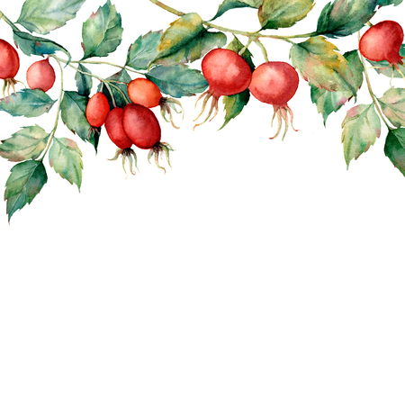 Watercolor card with branch of briar, red berries and green leaves. Hand painted Dog rose and hips isolated on white background. Illustration for design, fabric, print or background.