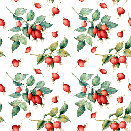 Watercolor seamless pattern with branch of briar, red berries and green leaves. Hand painted Dog rose and hips isolated on white background. Illustration for design, fabric, print or background.