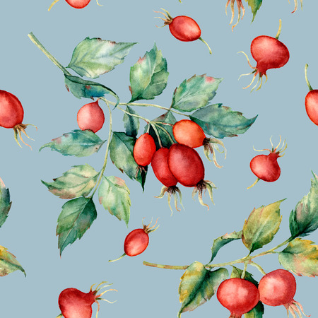 Watercolor seamless pattern with branch of Dog rose, red berries and green leaves. Hand painted briar and hips isolated on blue background. Illustration for design, fabric, print or background.