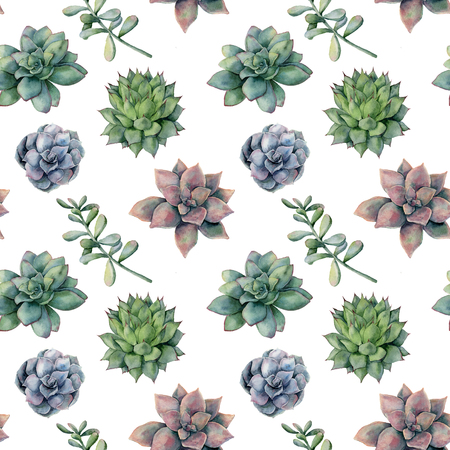 Watercolor pattern with different succulents. Hand painted ornament with cactuses and leaves isolated on green background. Floral illustration for design, print or background.