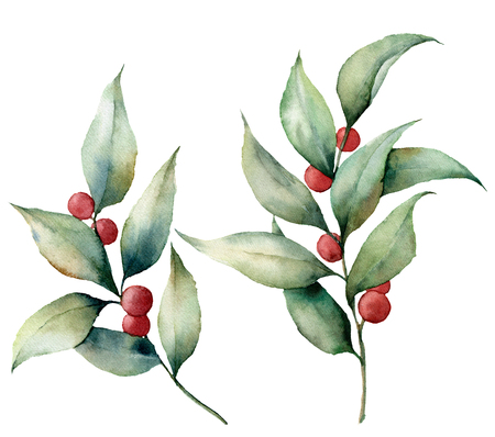 Watercolor lingonberry with berries. Hand painted floral illustration with leaves and branches isolated on white background. Botanical elements for design or print. Stock Photo
