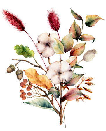 Watercolor autumn bouquet with plants, flowers and berries. Hand painted cotton flowers, lagurus, acorn, leaves and branches isolated on white background. Floral illustration for fall design, print. Imagens