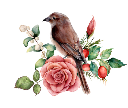 Watercolor bouquet with bird and rose. Hand painted floral illustration with pink flower, dogrose, snowberries, leaves and branches isolated on white background. For design, print or background. Stock Photo