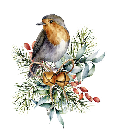 Watercolor Christmas card with robin, bells and winter design. Hand painted bird with eucalyptus leaves, golden bells, fir branch and barberry isolated on white background. Holiday symbol for design. Stockfoto