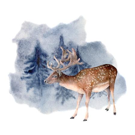 Aquarellhirsch im Winterwald. Handgemalte Tierillustration mit Damwild und Kiefern lokalisiert auf weißem Hintergrund. Urlaub ClipArt für Design, Druck. Weihnachtskarte.