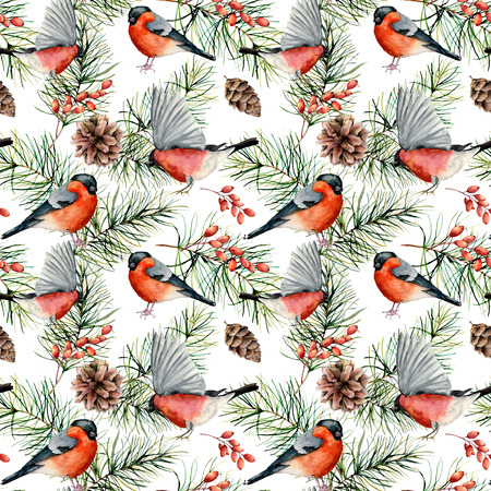 Watercolor winter pattern with bullfinches. Hand painted birds, pine branches with cones, berries isolated on white background.  Holiday nature illustration for design, fabric, print.