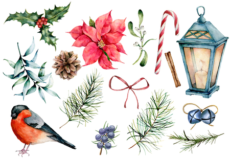 Watercolor Christmas symbols set. Hand painted winter plants, bullfinch bird, decor isolated on white background. Holiday floral and objects illustration for design, print, background