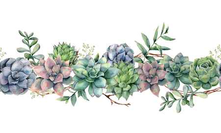 Watercolor seamless bouquet with succulents, tree branch and eucalyptus. Hand painted cacti, eucalyptus leaves and branches isolated on white background.  Botanical illustration for design, print.