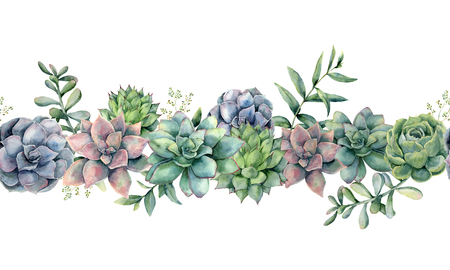 Watercolor succulents seamless bouquet. Hand painted green, violet, pink cacti, eucalyptus leaves and branches isolated on white background.  Botanical illustration for design, print. Green plants 스톡 콘텐츠