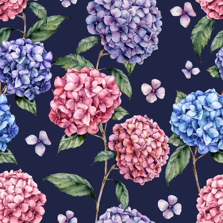 Watercolor hydrangea pattern. Hand painted blue, violet, pink flowers with leaves and branch isolated on dark blue background.  Nature botanical illustration for design, print, fabric