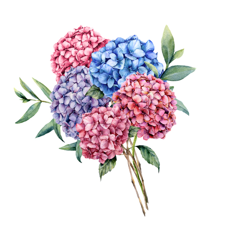 Watercolor elegance bouquet with hydrangea. Hand painted pink, blue and violet flowers with eucalyptus leaves and branch isolated on white background. Nature botanical illustration for design, print Stock Photo