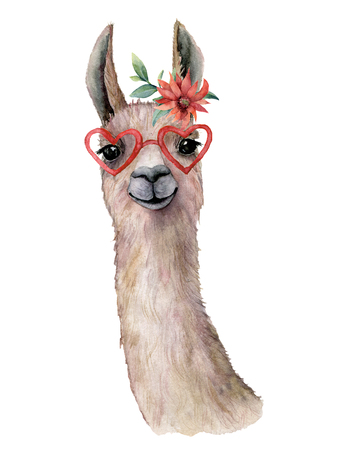 Watercolor card with llama, flower and sunglasses. Hand painted beautiful illustration with animal, red flower and sunglasses isolated on white background. For design, print, fabric or background. Stok Fotoğraf - 116174936