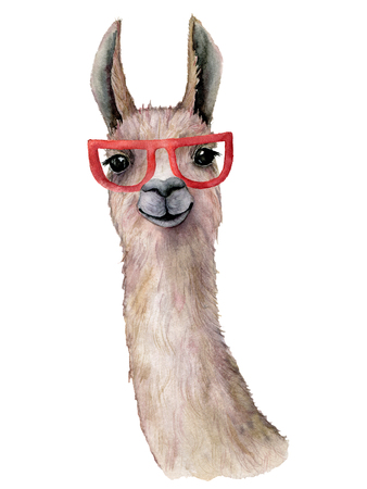 Watercolor card with llama and sunglasses. Hand painted beautiful illustration with animal and sunglasses isolated on white background. For design, print, fabric or background.