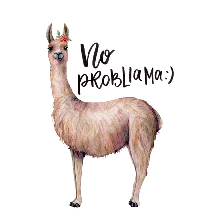 Watercolor No probllama card with llama. Hand painted beautiful illustration with animal, flower and lettering isolated on white background. For design, print, fabric or background.