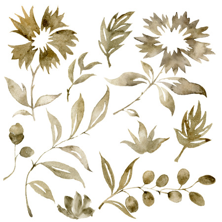 Watercolor sepia flowers bouquet set. Hand painted flowers and berries with eucalyptus leaves and branch isolated on white background for design, print or fabric.
