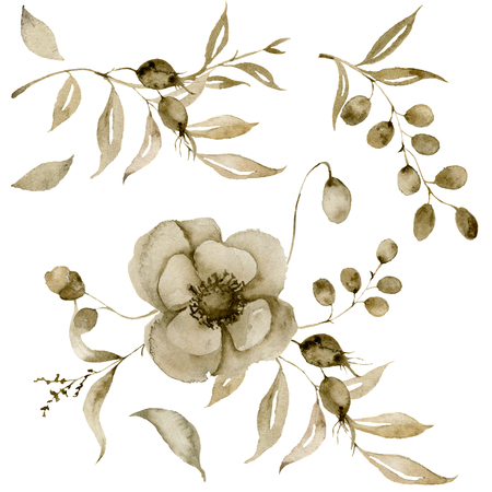 Watercolor sepia anemone set for bouquet. Hand painted flowers and berries with eucalyptus leaves and branch isolated on white background for design, print or fabric.