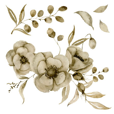 Watercolor sepia anemone bouquet set. Hand painted flowers and berries with eucalyptus leaves and branch isolated on white background for design, print or fabric.