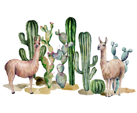 Watercolor card with llama and cacti. Hand painted beautiful illustration with animals and floral on white background. For design, print, fabric or background.