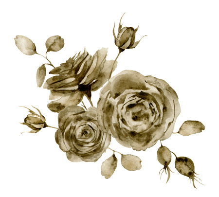 Watercolor monochrome rose bouquet. Hand painted sepia flowers and berries with eucalyptus leaves and branch isolated on white background for design, print or fabric. Stock Photo