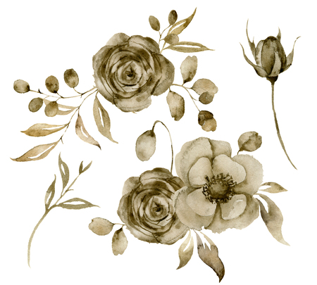 Watercolor sepia rose and anemone bouquet set. Hand painted flowers and berries with eucalyptus leaves and branch isolated on white background for design, print or fabric. Stock Photo