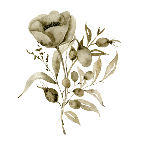 Watercolor sepia anemone composition. Hand painted flower and berries with eucalyptus leaves and branch isolated on white background for design, print or fabric.