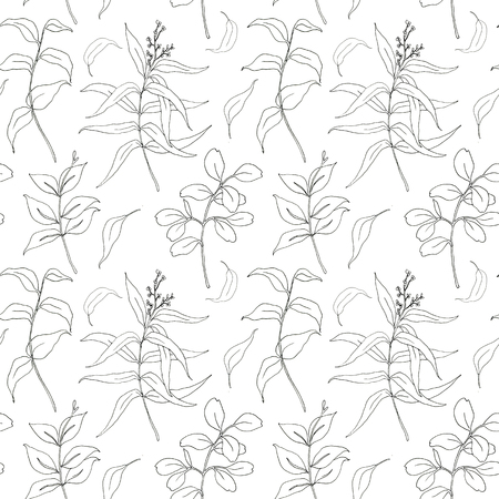 Sketch eucalyptus leaves big seamless pattern. Hand painted sepia eucalyptus leaves and branch isolated on white background for design, print or fabric.