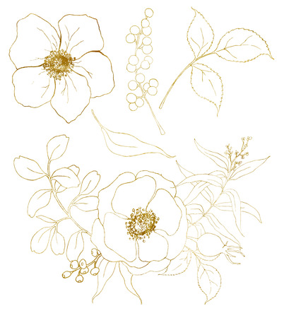 Golden sketch anemone bouquet set. Hand painted flowers, eucalyptus leaves, berries and branch isolated on white background for design, print or fabric.
