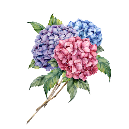 Watercolor hydrangea bouquet. Hand painted pink and violet flowers with leaves isolated on white background for design, print. Stock fotó