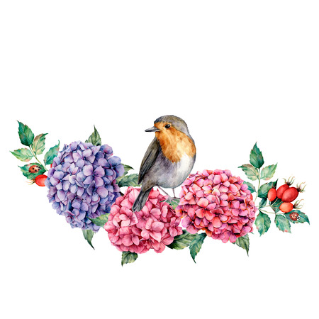 Watercolor composition with robin and flowers. Hand painted hydrangea and dog rose bouquet with eucalyptus leaves isolated on white background for design, print. Stock fotó
