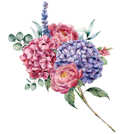 Watercolor hydrangea and peony bouquet. Hand painted pink and violet flowers, lavender with eucalyptus leaves isolated on white background for design, print.