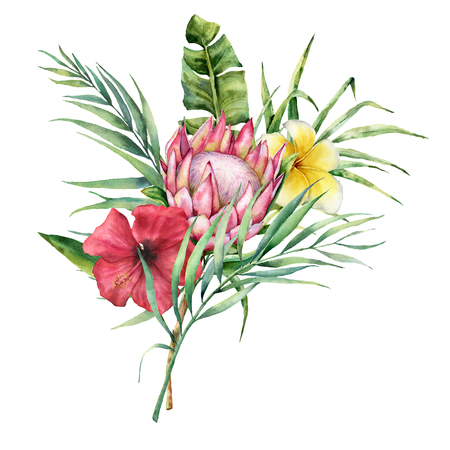 Watercolor tropical flowers and palm leaves bouquet. Hand painted protea, hibiscus and plumeria isolated on white background. Nature botanical illustration for design, print. Realistic delicate plant. Stock Photo