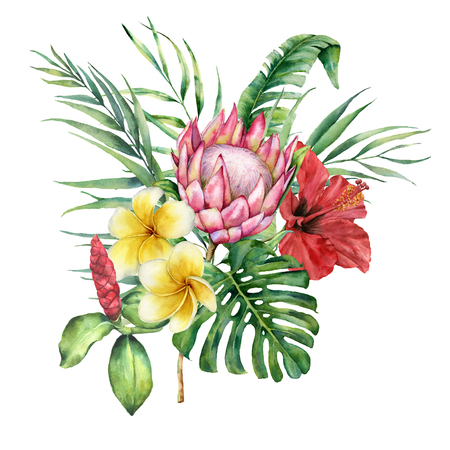Watercolor tropical flowers and leaves bouquet. Hand painted protea, hibiscus and plumeria isolated on white background. Nature botanical illustration for design, print. Realistic delicate plant. Stock Photo