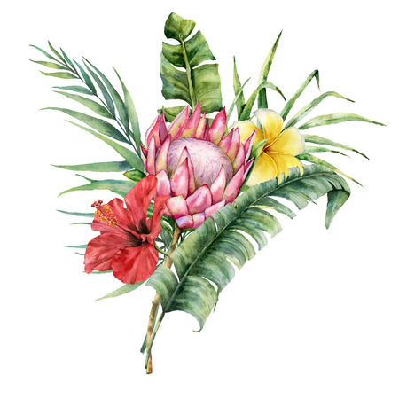 Watercolor tropical flowers bouquet. Hand painted protea, hibiscus, plumeria and palm leaves isolated on white background. Nature botanical illustration for design, print. Realistic delicate plant. Фото со стока