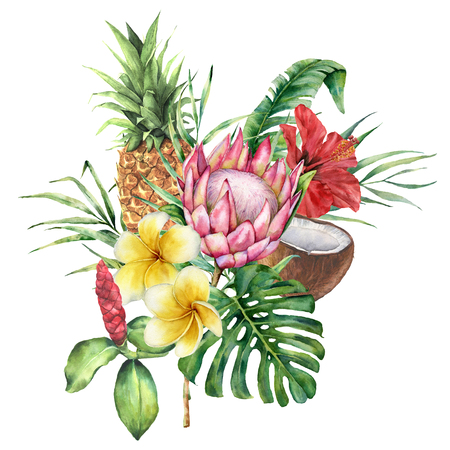 Watercolor tropical flowers and fruit bouquet. Hand painted protea, hibiscus, plumeria, leaves isolated on white background. Nature botanical illustration for design, print. Realistic delicate plant. Stock Photo
