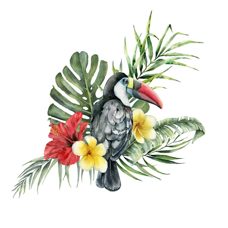 Watercolor tropical flowers bouquet and toucan. Hand painted bird, hibiscus and plumeria isolated on white background. Nature botanical illustration for design, print. Realistic delicate plant. Stock Photo