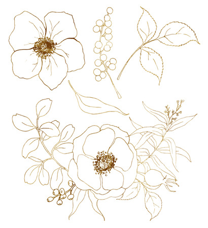 Vector golden sketch anemone bouquet set. Hand painted flowers, eucalyptus leaves, berries and branch isolated on white background for design, print or fabric. Illustration