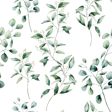 Watercolor different eucalyptus seamless pattern on white background. Hand painted isolated eucalyptus branch and leaves. Floral illustration for design, print, fabric or background.