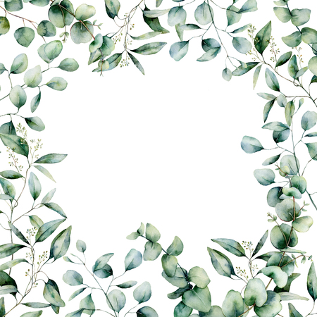Watercolor different eucalyptus square card. Hand painted eucalyptus branch and leaves isolated on white background. Floral illustration for design, print, fabric or background.