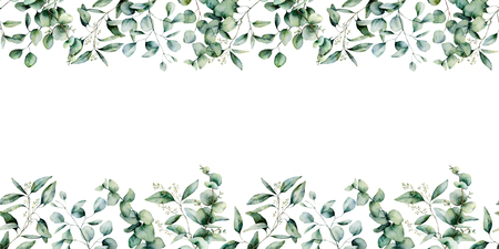 Watercolor eucalyptus seamless border. Hand painted eucalyptus branch and leaves isolated on white background. Floral illustration for design, print, fabric or background. Stock Photo