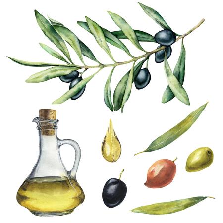 Aquarellset mit schwarzem Olivenzweig und Flasche. Handgemalte Illustration mit Olivenbeeren, Olivenöl und Ästen mit Blättern auf weißem Hintergrund. Für Design, Druck und Stoff. Standard-Bild