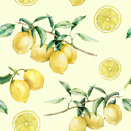 Watercolor lemon slice and branch seamless pattern. Hand painted lemon fruit on branch with slice isolated on white background. Floral botanical illustration for design, print. Standard-Bild